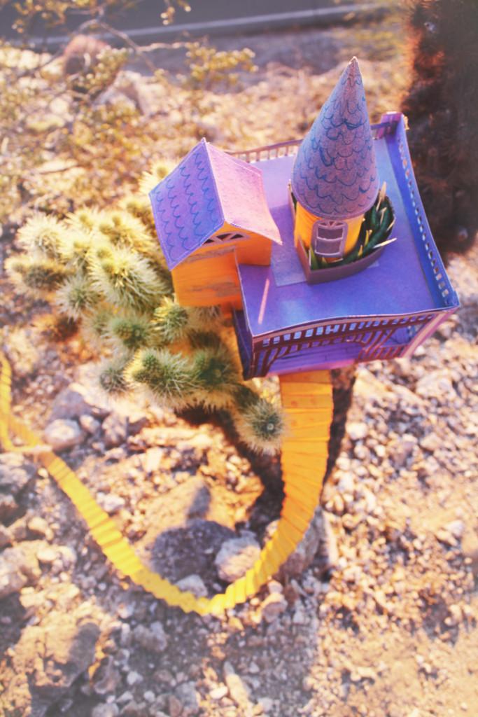 cactus-living15-web
