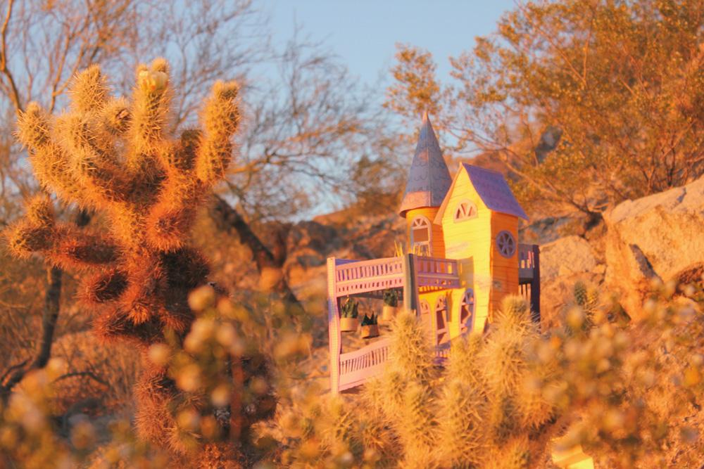 cactus-living17-web